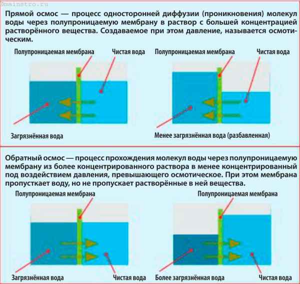 Схема работы прямого и обратного осмоса.