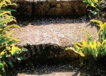 Ступени в саду